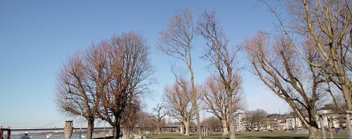 Erhabene Momente – Walking Meditation 25.02.2018 Düsseldorf